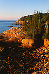 Shoreline along Ocean Drive, Acadia National Park, Maine, USA