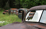 Rusted trucks along the roadside on US 319 in Wakulla County south of Crawfordville, Florida September 21, 2008.  (Mark Wallheiser/TallahasseeStock.com)