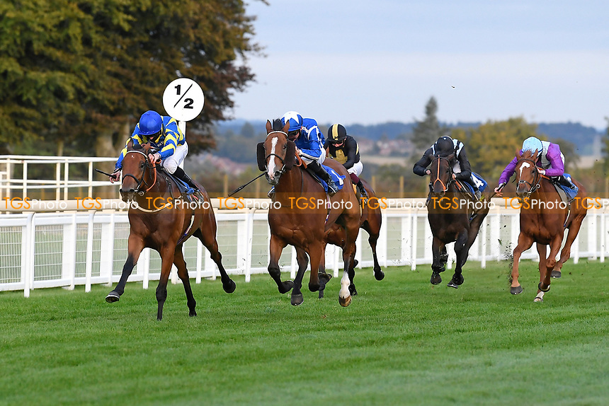 Winner of The Persian Punch Conditions Stakes Trueshan ridden by Martin Harley and trained by Alan King during Horse Racing at Salisbury Racecourse on 11th September 2020