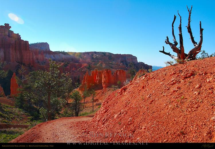 Fairyland Canyon Trail at Sunrise, Bryce Canyon National Park, Utah