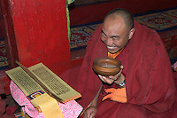 Lama drinks tea while reading scriptures at the Dhokham Garther Monastery - Kham, Sichuan Province, China, (Tibet)