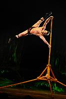 Cirque du Soleil Royal Albert Hall Show