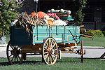 Fall Decorations in a wooden Springfield wagon full of gourds pumpkins corn stalks and flowers Branson Missouri