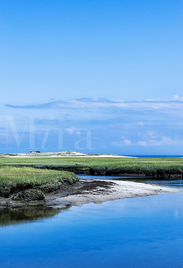 Salt marsh coastal landscape, Sandy Neck, Cape Cod, Massachusetts, USA.