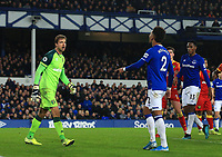 23rd  November 2019; Goodison Park , Liverpool, Merseyside, England; English Premier League Football, Everton versus Norwich City; Mason Holgate of Everton argues with Norwich City goalkeeper Tim Krul after Holgate was shown the yellow card for dissent - Strictly Editorial Use Only. No use with unauthorized audio, video, data, fixture lists, club/league logos or 'live' services. Online in-match use limited to 120 images, no video emulation. No use in betting, games or single club/league/player publications