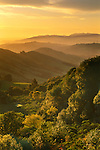Spring sunrise over green hills, near Orinda, CALIFORNIA