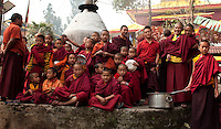 Buddhist Lama Monk  in a bonfire ceremony for Losar, in Sikkim, India