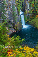 Toketee Falls, North Umpqua River, Umpqua National Forest, Douglas County, Oregon