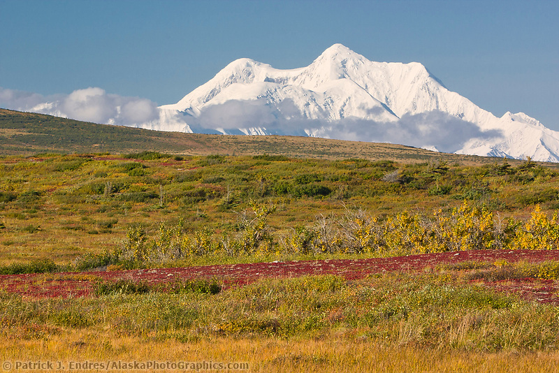 Mt. Hayes and autumn tundra foreground, Alaska Range mountains.