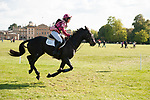 Badminton, Gloucestershire, United Kingdom, 4th May 2019, Emma Hyslop-Webb riding Pennlands Douglas during the Cross Country Phase of the 2019 Mitsubishi Motors Badminton Horse Trials, Credit:Jonathan Clarke/JPC Images