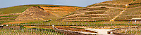 A view over the Crozes-Hermitage vineyards in the part of the appellation closes to Hermitage. On slopes with stone terraces. Panorama.   Crozes Hermitage, Drome, Drôme, France, Europe