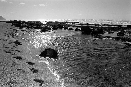 at Moss Beach.<br />
