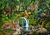 Interlitho-Franco, REALISTIC ANIMALS, REALISTISCHE TIERE, ANIMALES REALISTICOS, paintings+++++,djunglw,tiger,leopard,parrots,KL4564,#a#, EVERYDAY ,puzzle,puzzles