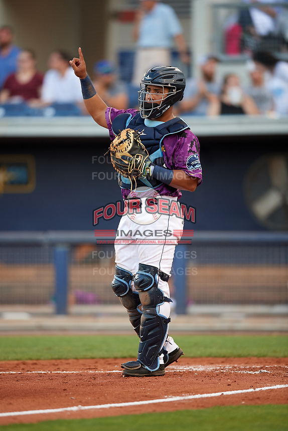 Charlotte Stone Crabs catcher David Rodriguez (13) signals to the defense during a game against the Palm Beach Cardinals on April 21, 2018 at Charlotte Sports Park in Port Charlotte, Florida.  Charlotte defeated Palm Beach 5-2.  (Mike Janes/Four Seam Images)