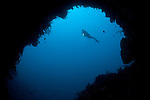 A diver explores a cavern in Gorontalo, Sulawesi