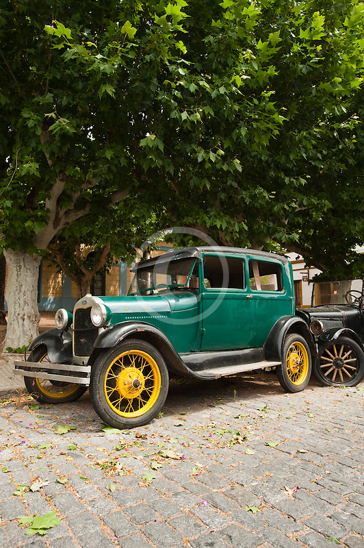 Uruguay, Colonia de Sacramento, Green antique automobile parked under tree