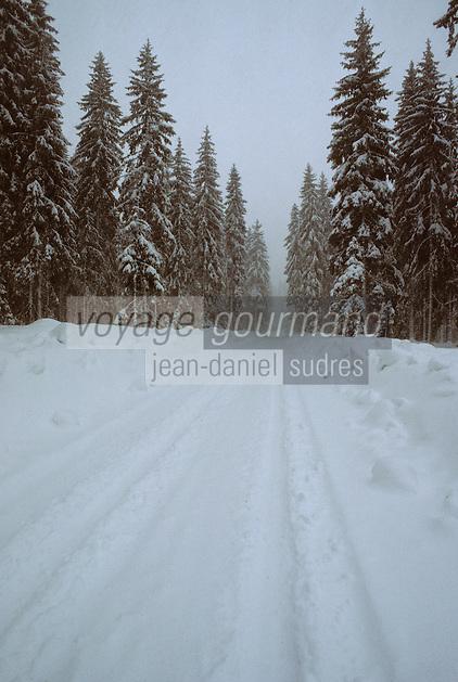 Europe/France/Franche Comté/39 /Jura/Env de Morbier: Route enneigée et Forêt du Mont Noir, // Jura, arround Morbier, snowy road and Mont Noir forest