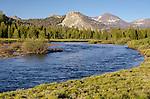 The Tuoliumne River flowing through Tuolumne Meadows, Yosemite National Park, California