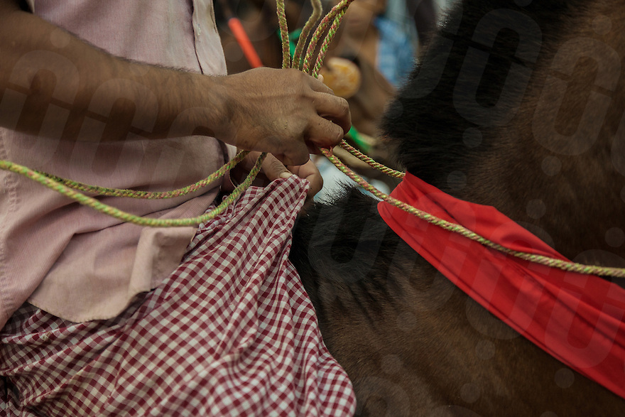 04/10/2013 - Vihear Suor (Kandal - Cambodia). A horse rider compete during the annual races held as part of the Festival of the Dead (Pchum Ben) in the small village of Vihear Suor. © Thomas Cristofoletti / Ruom.