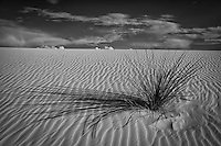 Black and White Sands - New Mexico