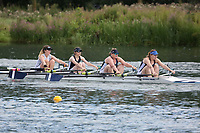 Race: 73: W Tier2 4x  Heat 2<br /> <br /> Peterborough Summer Regatta 2017 - Sunday<br /> <br /> To purchase this photo, or to see pricing information for Prints and Downloads, click the blue 'Add to Cart' button at the top-right of the page.