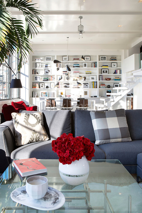 Modern gray sofa