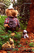 Xavier, CUTE ANIMALS, teddies, photos, SPCHTEDDIES46,#ac#