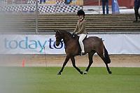Hunter Pony over 11.2 NE 12hh