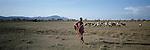 A Turkana Shepherd in the Turkana region of Northern  Kenya. .