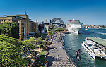 Cruise Ship in Sydney Harbour, NSW, Australia