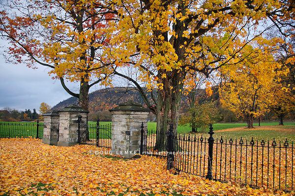 Wrought Iron And Stone Gateway In Autumn, New York