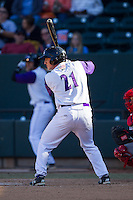 Martin Medina (21) of the Winston-Salem Dash at bat against the Salem Red Sox at BB&T Ballpark on April 20, 2014 in Winston-Salem, North Carolina.  The Dash defeated the Red Sox 10-8.  (Brian Westerholt/Four Seam Images)