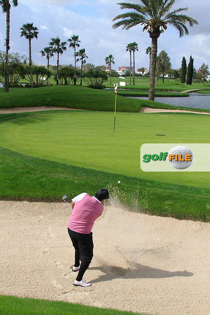 Joel Sjoholm (SWE) chips out of a bunker at the 16th green during Friday's Round 2 of the Open de Espana at Real Club de Golf de Sevilla, Seville, Spain, 4th May 2012 (Photo Eoin Clarke/www.golffile.ie)