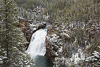 67545-09716 Upper Falls,  Yellowstone National Park, WY