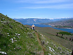 Hiking on Chelan Butte is a favorite past time of local residents and visitors. The wildflowers and views are worth the effort.
