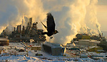 The Syncrude uprader, in Ft. McMurray, Alberta, Canada, on January 19, 2005.  ©John Ulan