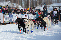 Curt Perano runs down the chute leaving the restart of the Iditarod sled dog race at Willow, Alaska Sunday, March 3, 2013.