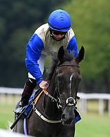 Kirstenbosch ridden by Hollie Doyle goes down to the start  of The British Stallion Studs EBF Upavon Fillies' Stakes  during Horse Racing at Salisbury Racecourse on 13th August 2020