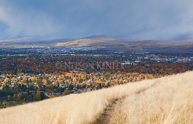 A trail on the hills above Missoula, Montana with fall colors of the trees in the valley and the grass on Mount Sentinel