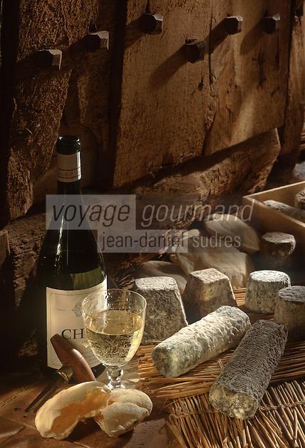 Europe/France/Centre/37/Indre-et-Loire/Env de Chinon: Vin Chinon Blanc AOC avec des fromages de Chèvre de Loire: St Maure, Valencay