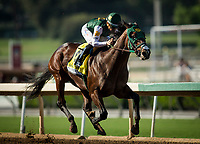 ARCADIA, CA - SEPTEMBER 30: Bolt d'Oro #3 with Corey Nakatani up wins the Frontrunner Stakes at Santa Anita Park on September 30, 2017 in Arcadia, California. (Photo by Alex Evers/Eclipse Sportswire/Getty Images)