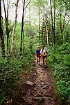 New Hampshire: Hikers on Appalachian Trail to Zealand Hut.  Photo #: nhappa104..Photo copyright Lee Foster, www.fostertravel.com, 510/549-2202, lee@fostertravel.com