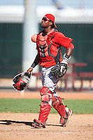 Cincinnati Reds minor league catcher Wagner Gomez #34 during an instructional league game against the Cleveland Indians at the Goodyear Training Complex on October 8, 2012 in Goodyear, Arizona.  (Mike Janes/Four Seam Images)