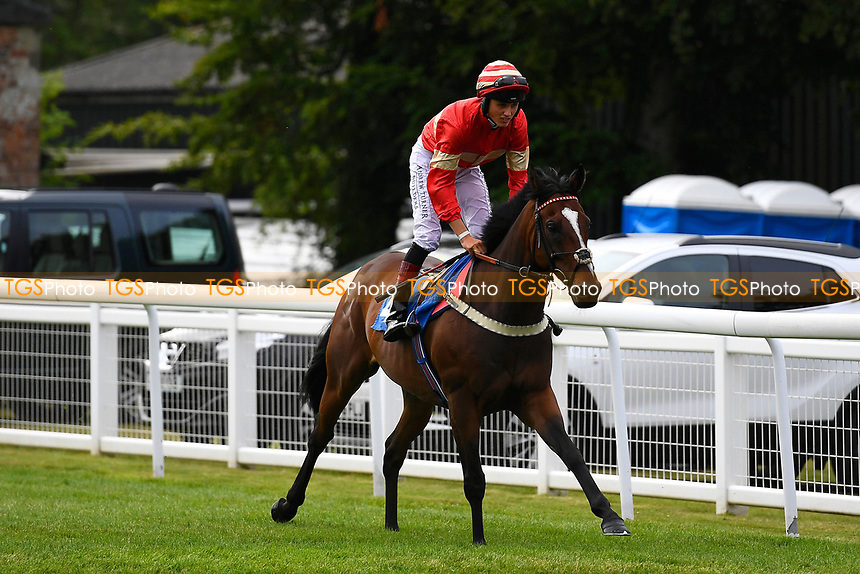 Exceeding Power ridden by George Wood goes down to the start  during Ladies Evening Racing at Salisbury Racecourse on 15th July 2017