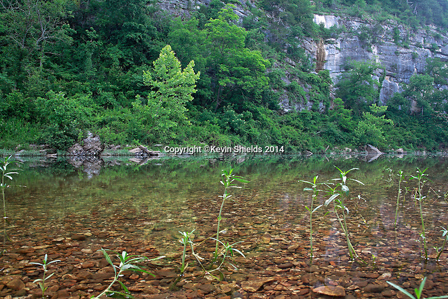 View of the Buffalo National River, Arkansas, USA