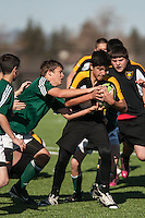 Pleasanton Cavaliers U14 Action 2013. (Photo by /AGP Photography)