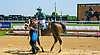 Lady Terp winning at Delaware Park on 7/31/17