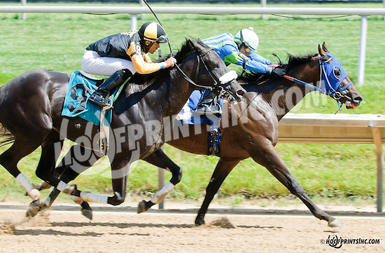 Big Zapple winning at Delaware Park on 6/29/13