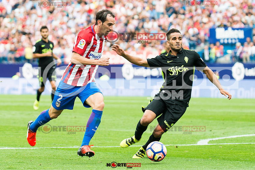 Atletico de Madrid's player Diego Godín and Sporting de Gijon's Douglas during a match of La Liga Santander at Vicente Calderon Stadium in Madrid. September 17, Spain. 2016. (ALTERPHOTOS/BorjaB.Hojas) /NORTEPHOTO