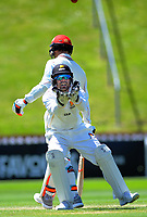 Wellington's Tom Blundell during day three of the Plunket Shield cricket match between the Wellington Firebirds and Canterbury at Basin Reserve in Wellington, New Zealand on Thursday, 31 October 2019. Photo: Dave Lintott / lintottphoto.co.nz